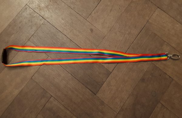 lanyard in the LGBT rainbow colours